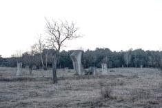 Steingarten - Skulpturenpark